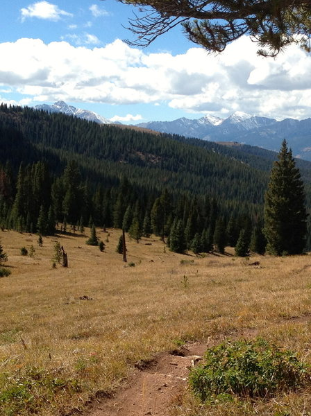 The upper part of the Two Elk trail is gorgeous and really easy.  It gets more difficult as you get closer to Minturn.