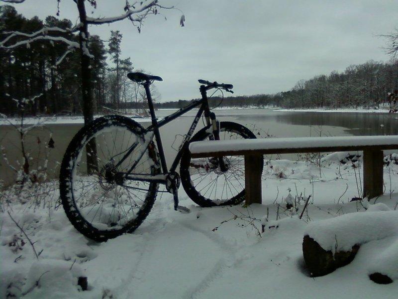 Virgin snow.