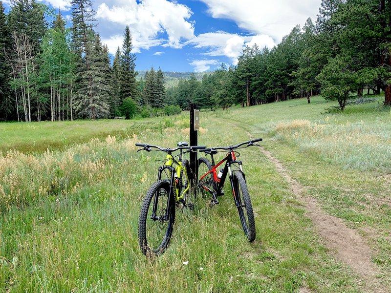 Bear Meadow Trail -- Angel Fire Valley.