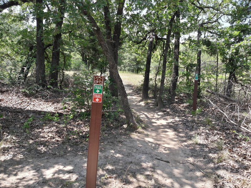 Typical trail marker; start of the expert-only section.