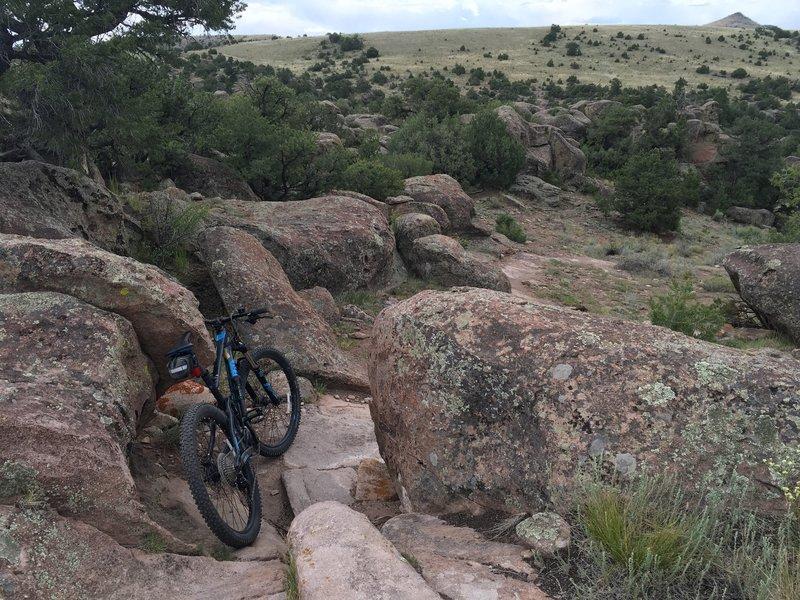 This trail rocks!