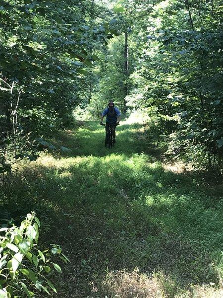 Open part of trail, not well-beaten.