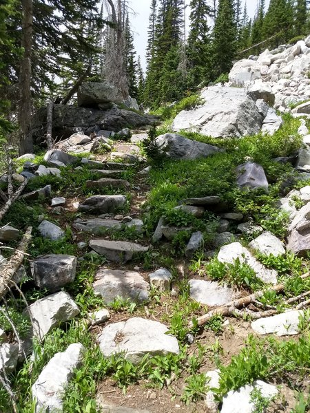 Steep rocky sections near the bottom of the east side of the trail.