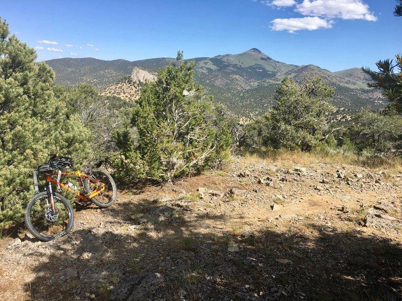 Mountain Bike Trails near Cave Lake State Park