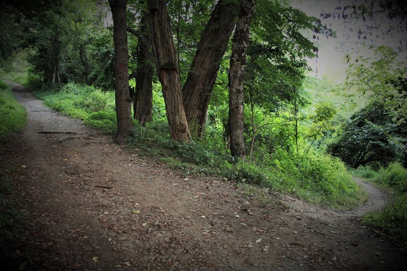 South end of Horse Trough Trail has no signage, but dips to the right off the doubletrack of Riverview Trail, just above the Riverview sign.