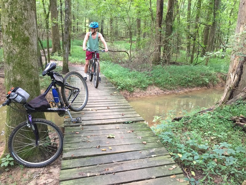 Trail is well maintained. Most bridges are in this condition.