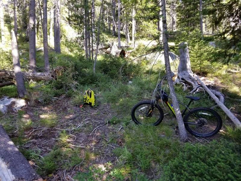Near a meadow where the trails basically disappears, the GPS tracks are mere suggestions and just before loading the bike on my back on the really steep climb, at around 3.5 / 3.6 miles in (from Deadwood Reservoir).