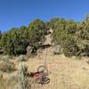 A false entrance to Secret Canyon- go left of this to avoid the big hike-a-bike up this hill