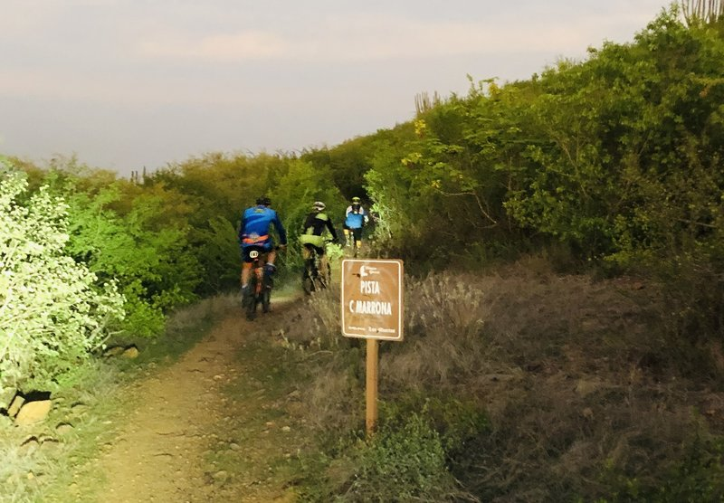Subiendo cimarrona trail