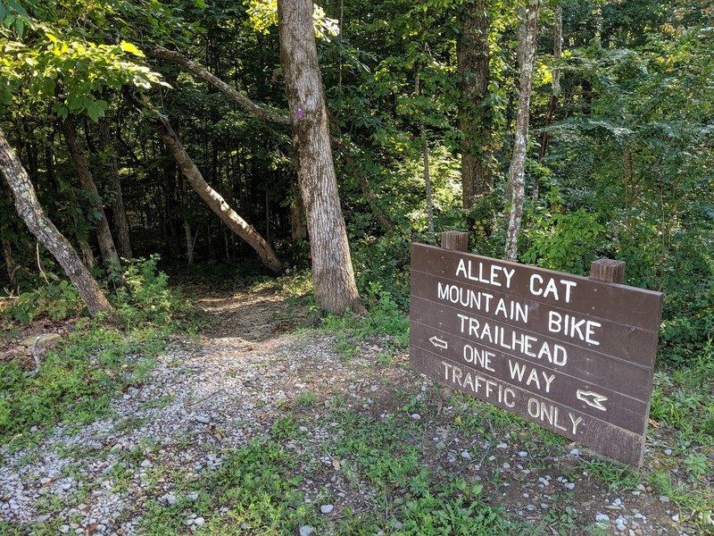 Alley Cat Mountain Bike Trailhead Sign