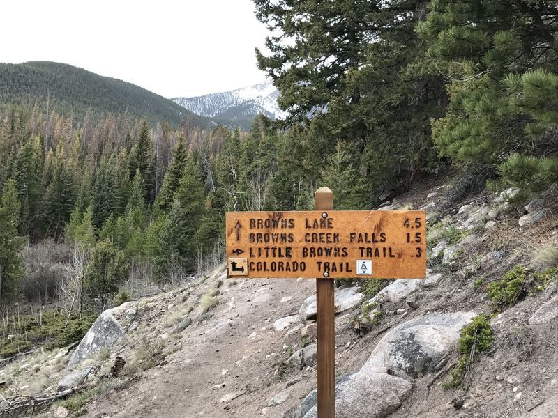 An informative sign marks the route to Browns Lake and the waterfall.