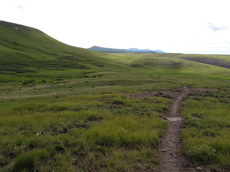 Trail across Snow Mesa is wide open cruising with some boggy dips.