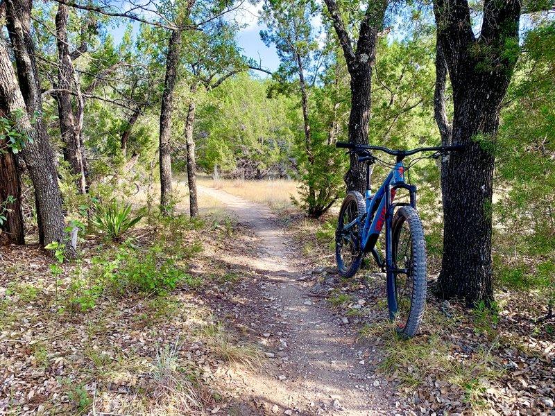 Fun time on Wookie Way trail.