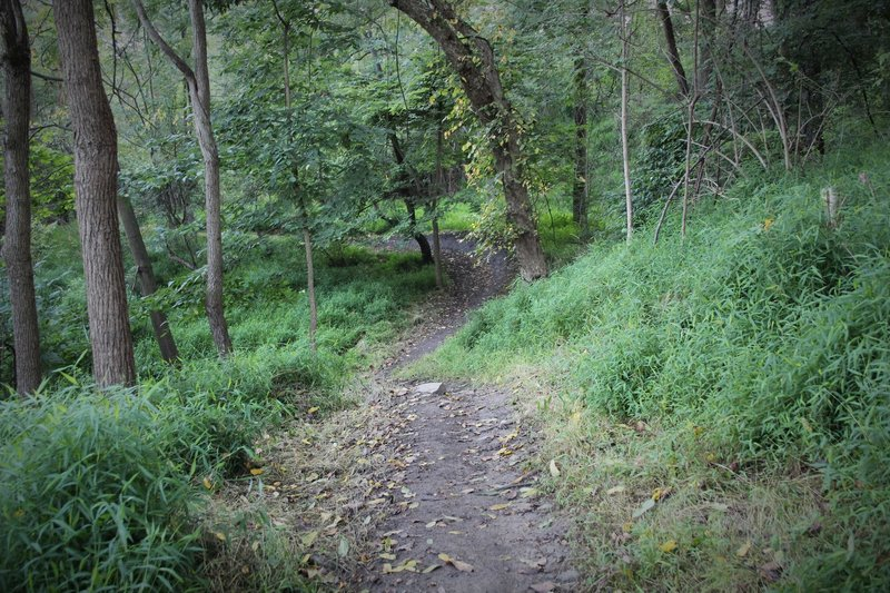 A rider can pick up speed after the uphill, leading into even more berms.