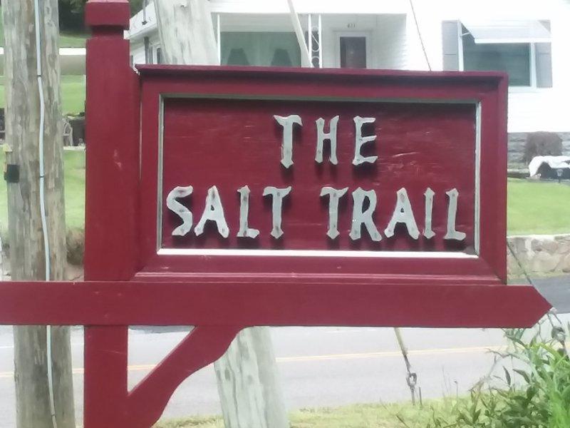 Sign near Saltville.