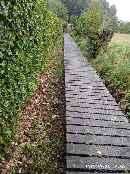Trail on wood