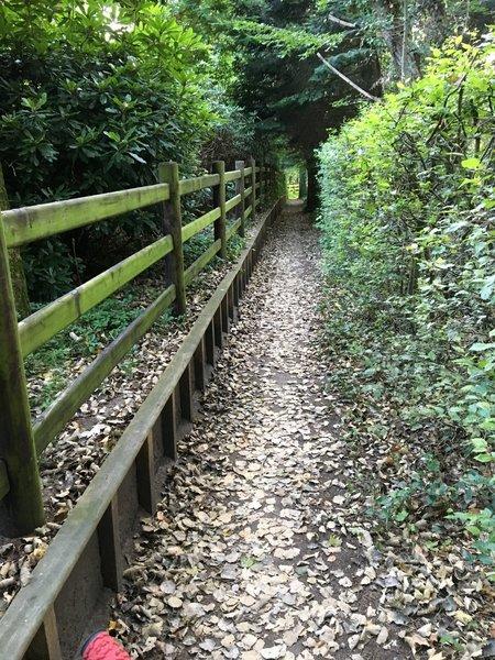 Narrow track