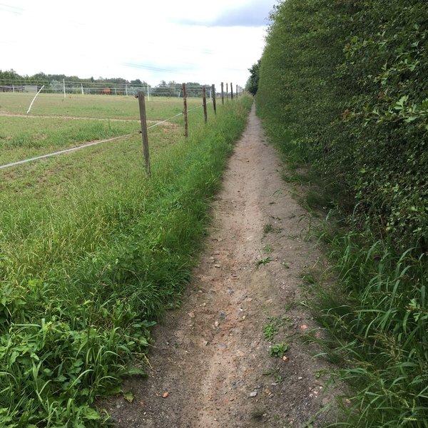 Sombeke tracks