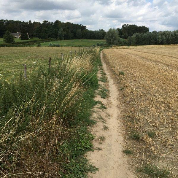 Sombeke trails
