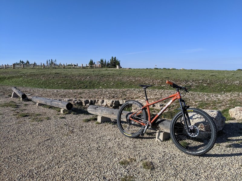 At the top--the Medicine Wheel is in the background.