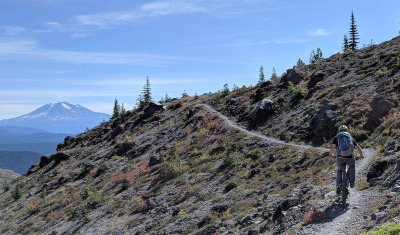 Views of Mt. Adams along trail