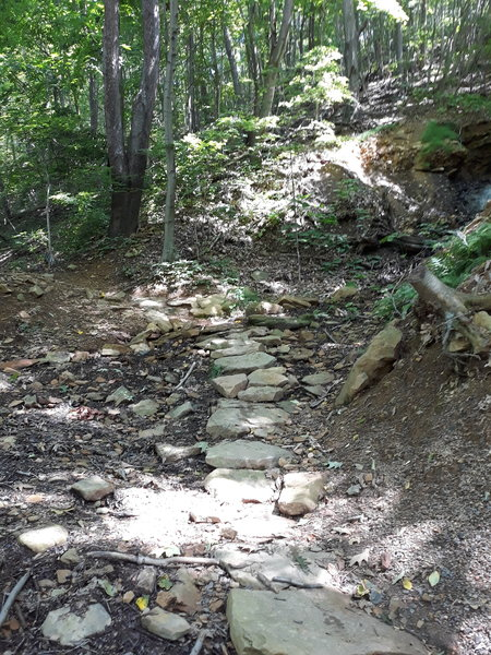 Several small rock bridges cross over streams on this trail.