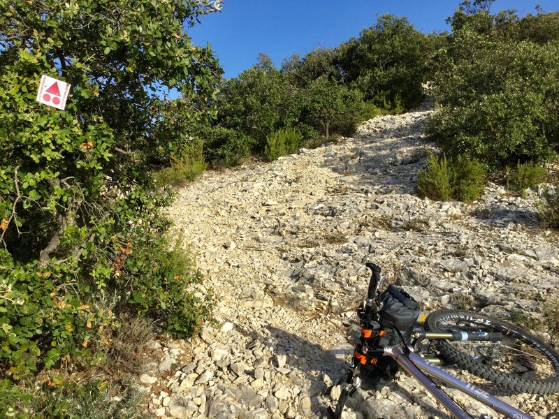 """If you have serious objections to riding (or pushing) up or down this kind of steep, rough, and loose """"trail,"""" the Grande Traversee of Luberon or Vaucluse is probably not for you; there's a lot of this kind of thing."""
