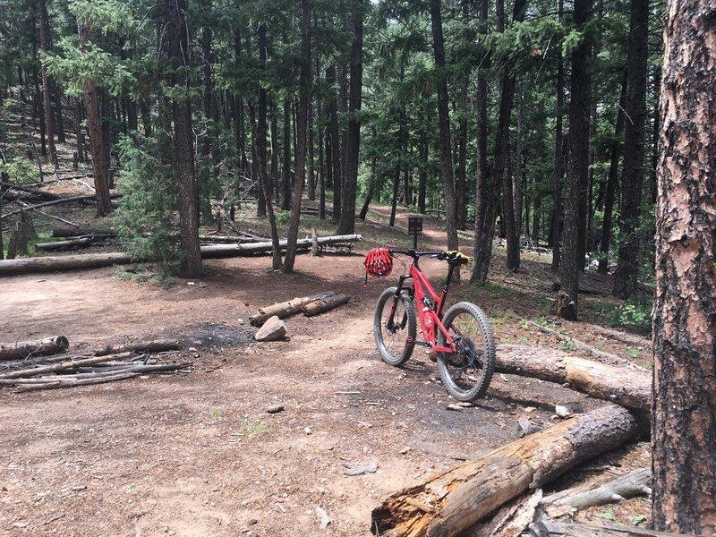 Colorado Trail - toward South Platte from Waterton Canyon.