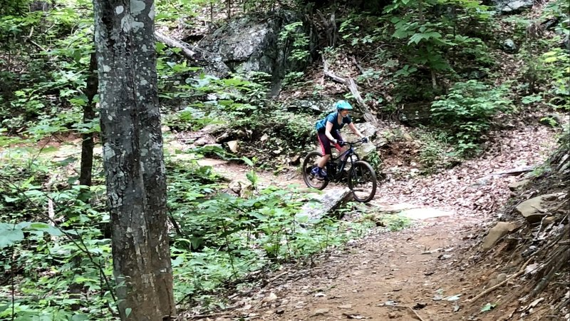 Fun trail to ride with an intermediate rider!