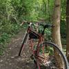 fun short trail, easily ridden with any bike