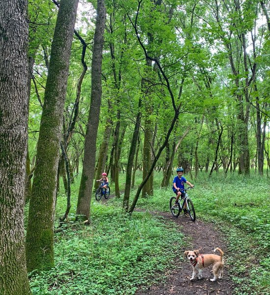 Target audience #mtbkids enjoying their first singletrack experience on the Creek Confluence (the dog is veteran)