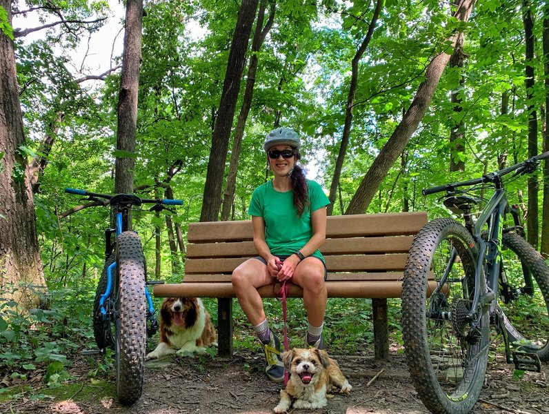mt. bikes + dogs + dirt = awesome
