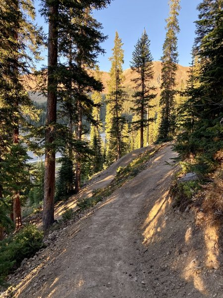 High berms through the switchbacks