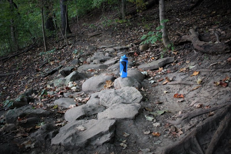 There's a few tricky rock gardens and exposed roots on this trail. Best to keep your momentum and not touch the brakes when wet.