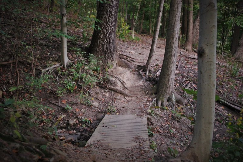 This is the second of 3 bridges, at a somewhat low point in the ravine just past the rock garden. Best to maintain speed to get up the steep roots between the trees on the other side.