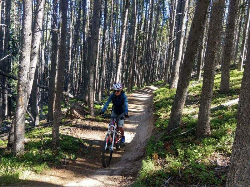 Cool and smooth downhill trail