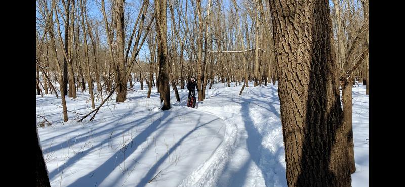 Rider enjoying some winter fun on the groomed #sacfoxsingletrack