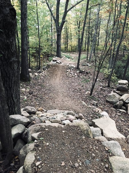 Rock features that add a good variety to the trail