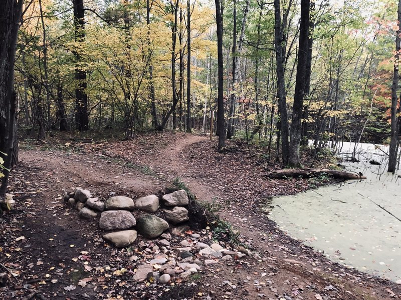 Scenic trail that passes numerous ponds. If you want something technical, go to Nine Mile. But Hatley has more elevation and flow. This is a hidden gem worth checking out, no matter your skill level