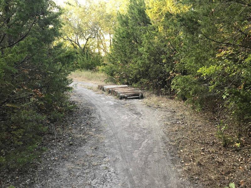 First log crossing on sister loop