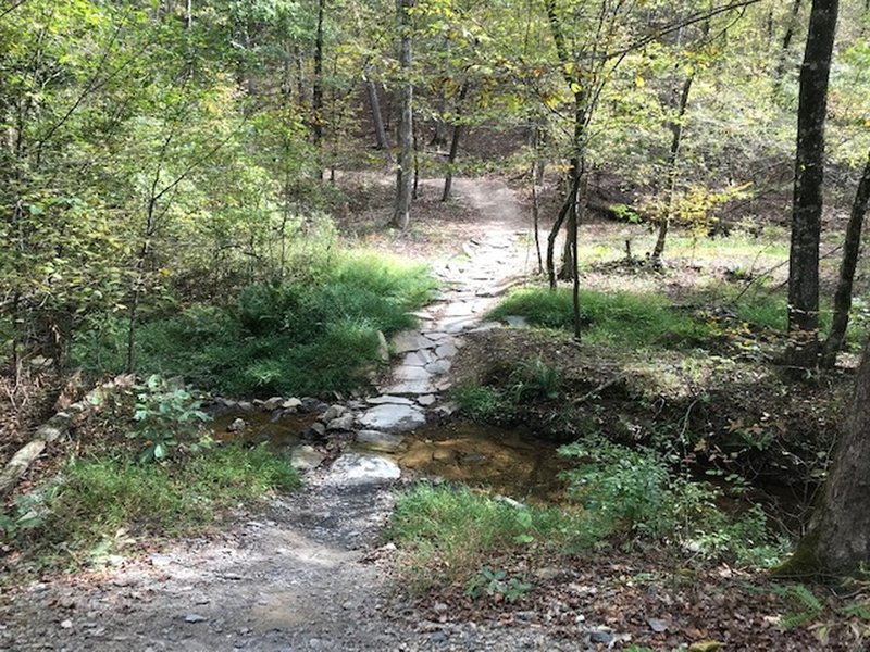 Bethel - trail upgraded from Green to Blue due to water crossing.