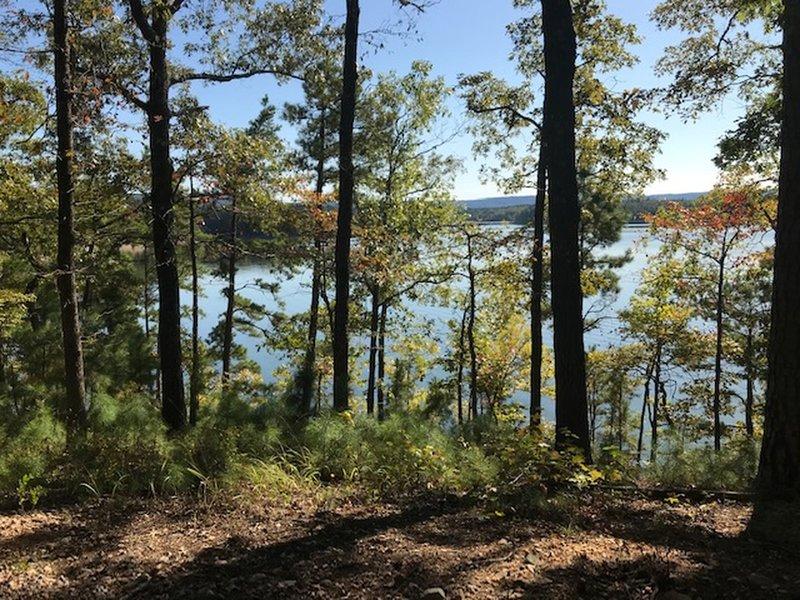 Womble Trail Lake View