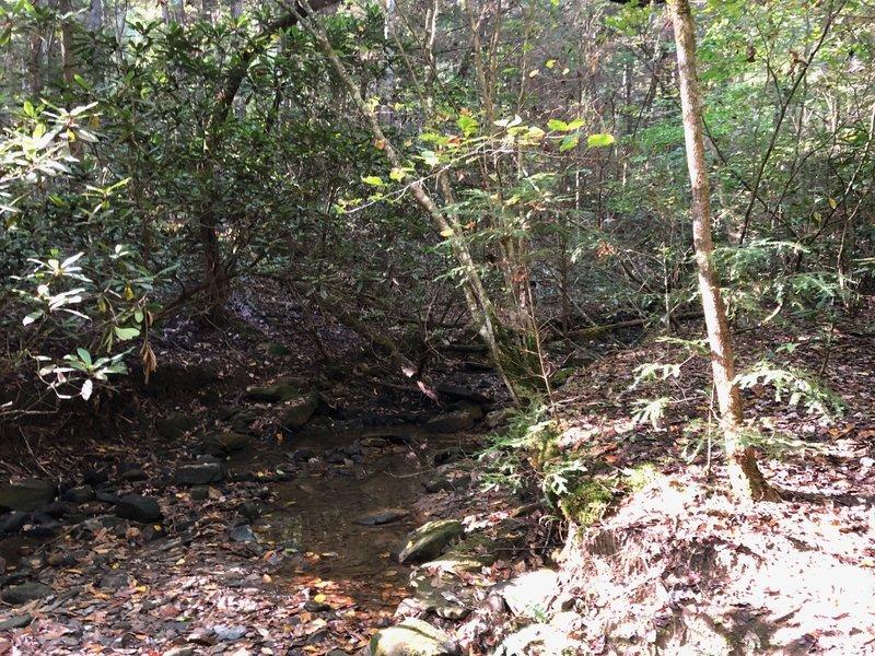 One of the creek crossings.