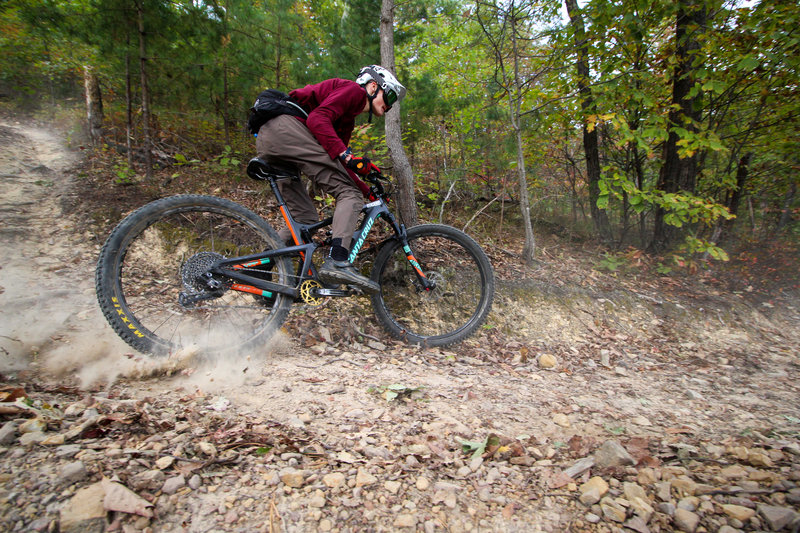 Creature from Carvins Cove Enduro 2019
