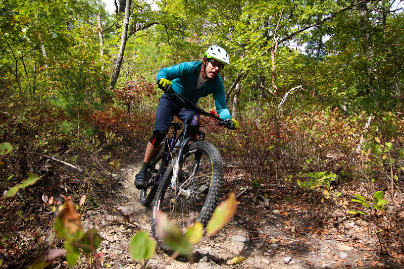 Steve Hetherington, owner of Just The Right Gear bike shop at Creature from Carvins Cove Enduro 2019