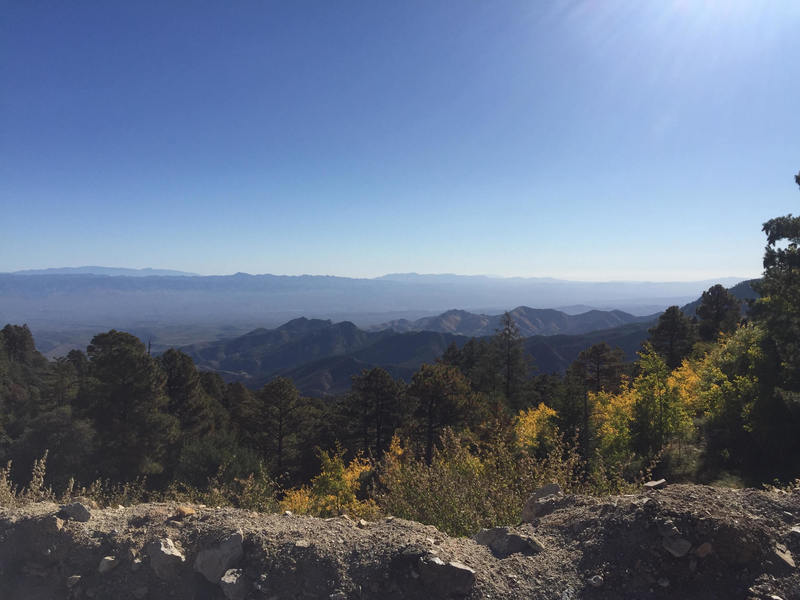 A view from  the top of Mt Lemmon