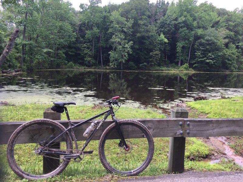 Rosaryville Pond