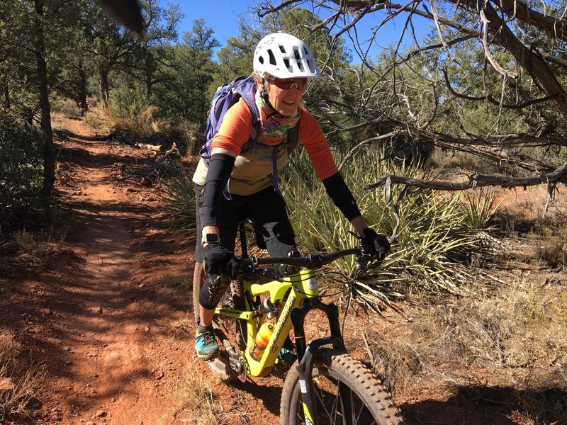 Coasting a mellow section of trail