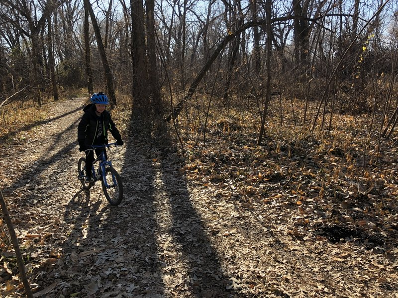 The campus woods trail is very wide, flat and perfect for beginners.
