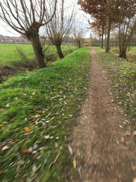 S track
